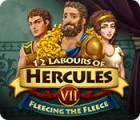 12 Labours of Hercules VII: Fleecing the Fleece gioco