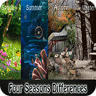 Four Seasons Differences gioco