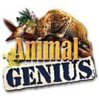 Animal Genius gioco