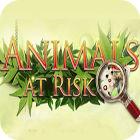 Animals At Risk gioco