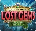 Antique Shop: Lost Gems Egypt gioco