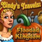 Cindy's Travels: Flooded Kingdom gioco