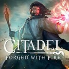Citadel: Forged with Fire gioco