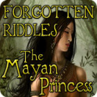 Forgotten Riddles: The Mayan Princess gioco