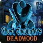 Ghost Encounters: Deadwood gioco