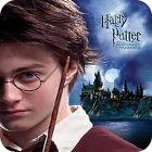 Harry Potter: Puzzled Harry gioco