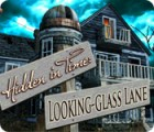 Hidden in Time: Looking-glass Lane gioco