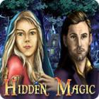 Hidden Magic gioco
