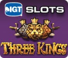 IGT Slots Three Kings gioco