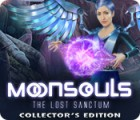 Moonsouls: The Lost Sanctum Collector's Edition gioco