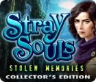 Stray Souls: Stolen Memories Collector's Edition gioco